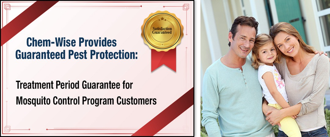 Chem-Wise Provides Guaranteed Pest Protection: Treatment Period Guarantee for Mosquito Control Program Customers